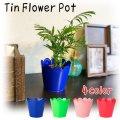Tin Flower Pot【全4種】