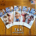 T&A Bikini Sexy Girls Air Freshener 3枚セット