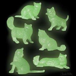 画像2: GLOW CATS 【6種類Set】