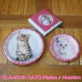 GLAMOUR CATS PLATE/NAPKIN【全3種】