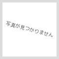 Garden Vintage SignPlate【全7種】